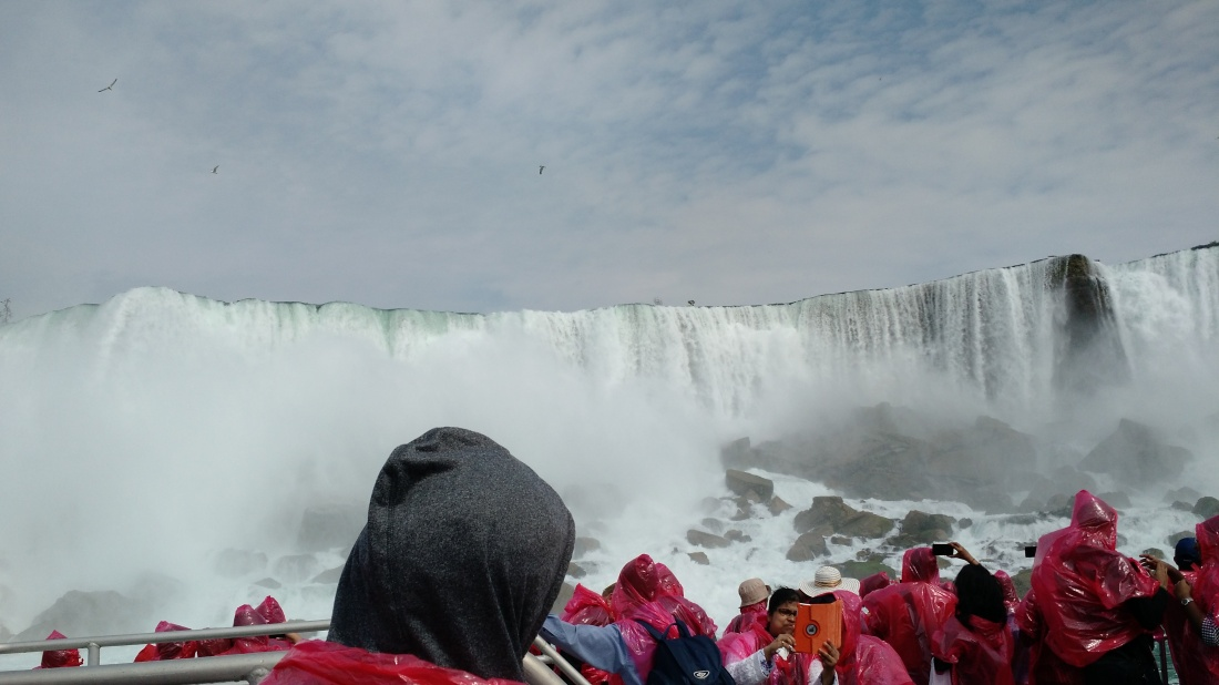 Horseshoe falls + people